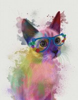Rainbow Splash Cat 2 Fine-Art Print
