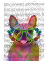 Rainbow Splash French Bulldog, Portrait Fine-Art Print