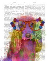 Rainbow Splash Cocker Spaniel, Portrait Fine-Art Print