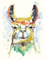 Hifi Llama II Fine-Art Print