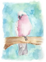 Sweet Tropical Bird III Fine-Art Print
