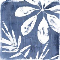 Tropical Indigo Impressions II Fine-Art Print