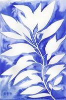 Ink Blot Vine I Fine-Art Print