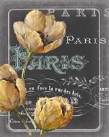 Chalkboard Paris II Fine-Art Print