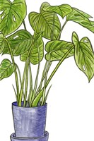 Potted Jungle III Fine-Art Print