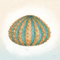Boardwalk Urchin Fine-Art Print