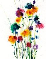 New Blooms on White Fine-Art Print