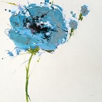 Turquoise Poppy Master on White Fine-Art Print