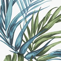Palm Leaves II Fine-Art Print