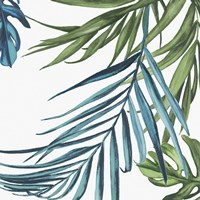 Palm Leaves III Fine-Art Print