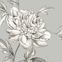 Botanical II Fine-Art Print