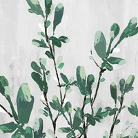 The Branch I Fine-Art Print