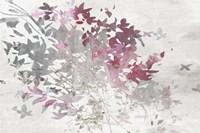 Hydrangea II Fine-Art Print