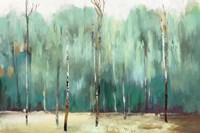 Teal Forest Fine-Art Print