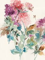 Sweet Hydrangea I Fine-Art Print