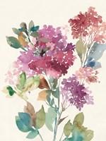 Sweet Hydrangea II Fine-Art Print