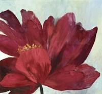 Red Splendor Fine-Art Print