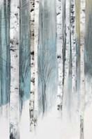 Tree Trunks Blue Fine-Art Print