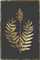 Botanical Gold on Black III Fine-Art Print