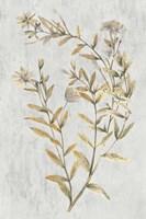 Botanical Gold on White II Fine-Art Print