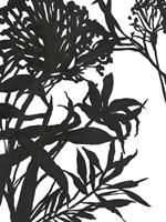 Monochrome Foliage I Fine-Art Print