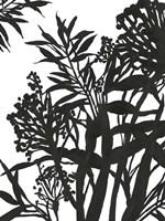 Monochrome Foliage II Fine-Art Print