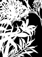 Monochrome Foliage III Fine-Art Print