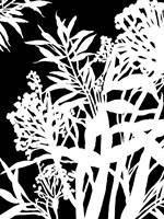 Monochrome Foliage IV Fine-Art Print
