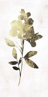 Gold Botanical I Fine-Art Print