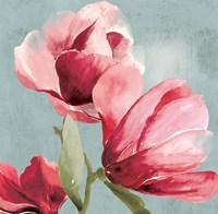 Sweetpea I Fine-Art Print