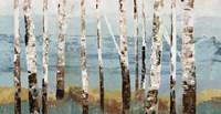 Birch Reflection Fine-Art Print
