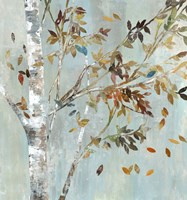 Birch with Leaves I Fine-Art Print