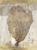 Coral Splendor III Fine-Art Print