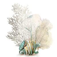 Coral II Fine-Art Print