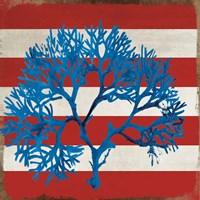 Marine Coral I Fine-Art Print