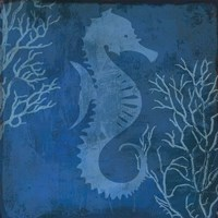 Navy Sea horse Fine-Art Print