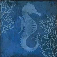Navy Sea horse Framed Print