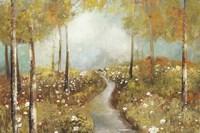 Dandelion Path Fine-Art Print