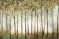 Riverside Forest Fine-Art Print