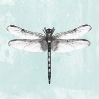 Dragonfly I Fine-Art Print