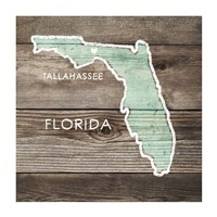 Florida Rustic Map Fine-Art Print