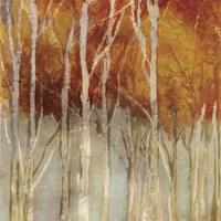 Belgium Forest I Fine-Art Print