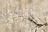 Silver Apple Blooms Fine-Art Print