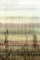 Wheat Fields Fine-Art Print