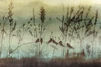 Louisianna Fine-Art Print