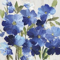 Cobalt Poppies I Fine-Art Print