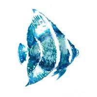 Fish I Fine-Art Print