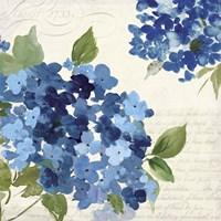 Hampton Hydrangea I Fine-Art Print