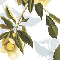 Lemon Floral Fine-Art Print