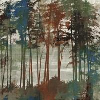 Spruce Woods I Fine-Art Print